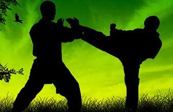Federação Cearense de Taekwondo